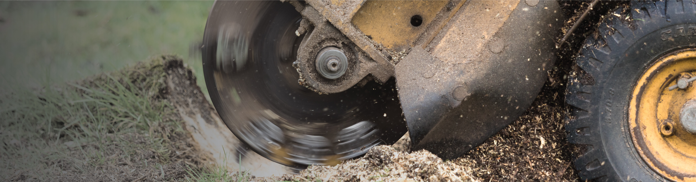 Stump Grinding Banner Image