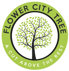 Flower City Tree Logo